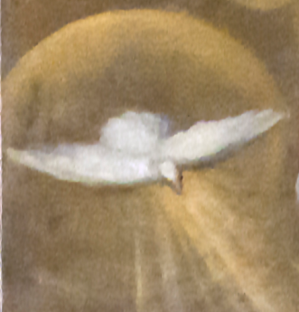 Pigeon from 1628 'Annunciation'_by_Palma_il_giovane_ San_Geremia