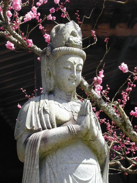 02 - picture Guan Yin (Japan) Daienin_Kannon