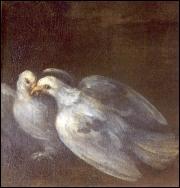 2 Pigeon of »Venere a cupido« Palazzo vendramin (1620-1628)