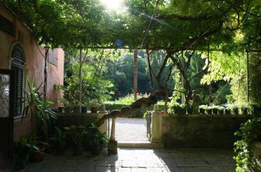 23 Secret Gardens of Venice - secret-gardens-of-venice-walking-tour-in-venice-439313