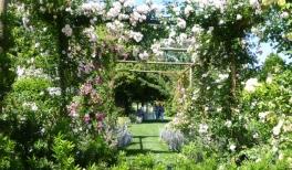 25 Secret Gardens of Venice - slider-venice_0001_2