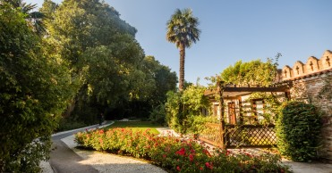 28 Secret Gardens of Venice - tour_img-682124-148